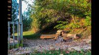 mill-pond-campfire